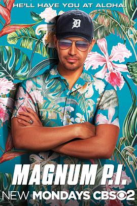 新版夏威夷神探