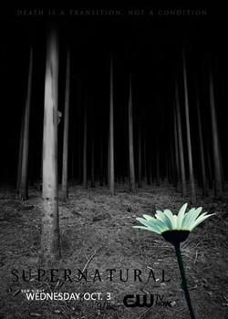 凶鬼恶灵/邪恶力量/超自然/灵异录/凶鬼恶第八季