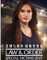 法律与秩序:特殊受害者第二十二季