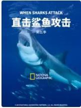 直击鲨鱼攻击 第五季