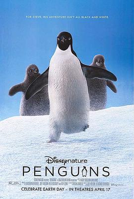 企鹅小萌萌