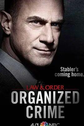 法律与秩序:组织犯罪第一季