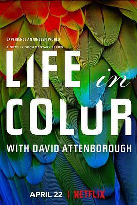 多彩生活 Life In Colour