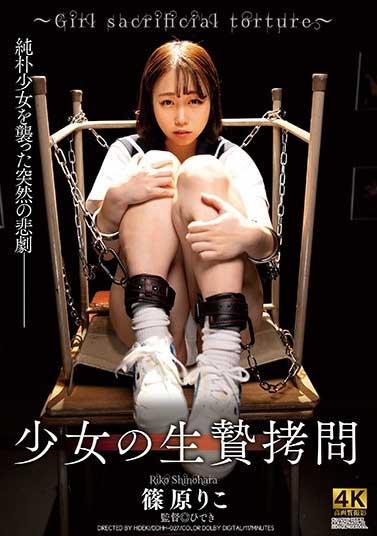 DDHH-027少女生�拷问-�S原りこ(骑兵)