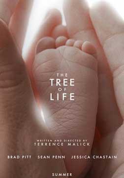 生命之树/生命树/永生树/家谱